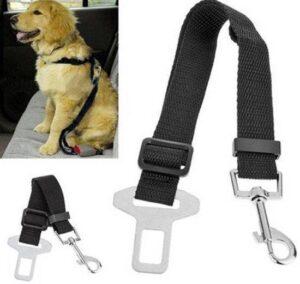 Honden auto riem - Auto gordel voor dieren - Hondenriem - Autogordel - Veiligheidsgordel voor honden