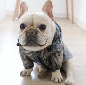 IBeans Regenjas voor honden - Hippe regenjas - Regenjas voor bulldogs - Maat XS