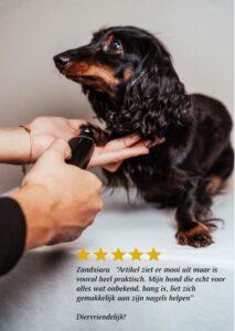 Pet-experts Elektrische nagelvijl voor het vijlen van de nagels van jouw huisdier