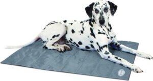 Scruffs Koelmat Hond - Grijs - L 92 x 69 cm