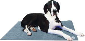 Scruffs Koelmat Hond - Grijs - XL 120 x 75 cm
