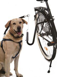 Beasty Premium Zwarte Fietsbeugel voor de Hond