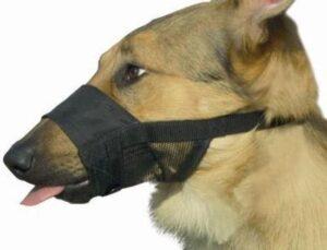 Beeztees Comfort Muilband - Hond - XL - 20-27 cm