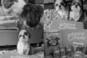 Edgard & Cooper Hondenbrokken