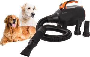 IMPAQT hondenfohn - Dierenborstel - Waterblazer hond goede prijs-kwaliteit verhouding