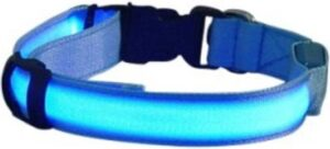LED honden halsband - Blauw L