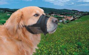 Nobby Muilkorf - Hond - Nylon - Maat 3 - 20 tot 27 cm