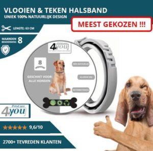 Vlooienband - beschermingsmiddel - 8 Maanden Bescherming - Alle Honden & Katten - Anti Vlooien en Teken middel - 65 cm - grijs - tijdelijk beschikbare deal
