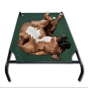 XL Honden Ligbed - Grote Hondenbed Stretcher - Dierenbed - Hondenstretcher Bed Op Poten - Hondenligbed 110x80cm - Groen Overtrek