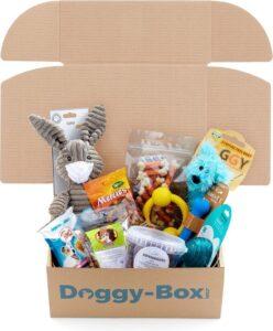 Doggy-box Puppy Verrassingspakket - Hondensnack-Hondenspeeltjes - Assorti