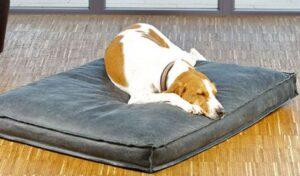 Orthopedische hondenkussen