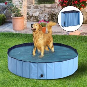 Hondenzwembad L - 140 x 30 x 30 cm - Blauw