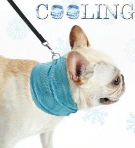 Verkoelende Honden Halsband - Koelhalsband - Cooling bandana - Blauw - Medium