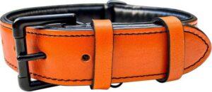 Brute Strength - Luxe leren halsband hond - Oranje