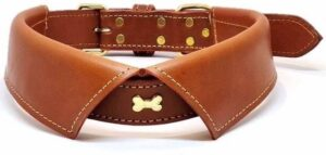 Dielay - Luxe Halsband voor Honden - Metalen Bot - Echt Leer