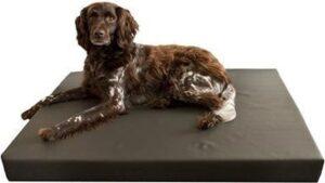 HD Orthopedisch hondenbed 55 x 80 x 10 cm