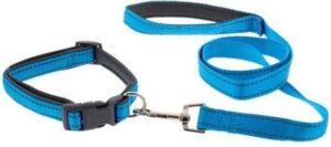 Hondenriem met halsband - Verstelbaar - 100 cm