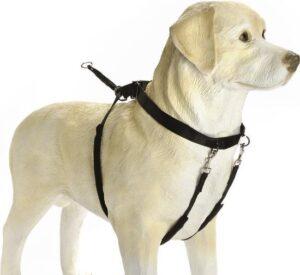 Hondenriem tegen trekken - Gentle Walker Tuig