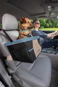 Verhoogd autozitje hond en Kleine Honden