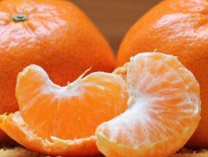 mandarijn voor hond