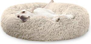 Pet Perfect Donut Hondenmand