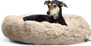 donut hondenmand